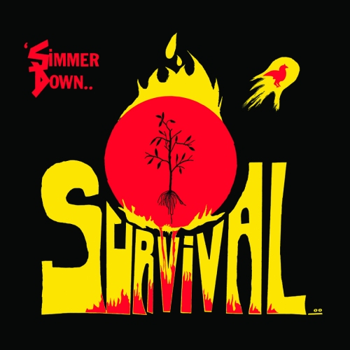 SR014-SURVIVAL-WEB