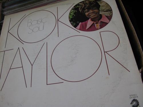 taylorkoko2